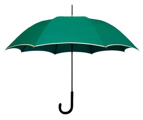 Parapluies classiques - Parapluie manche canne - Paris Rive Gauche | Raintop - Pandacola
