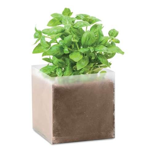 Graines - Sachet personnalisé avec graines Basilic à faire pousser - Basil - Pandacola