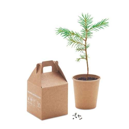 Kits de plantation - Kit de plantation personnalisable avec pot et graine de pinus nigra - Growtree - Pandacola