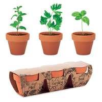 Ensemble de 3 pots de fleurs dans 3 pots différents personnalisables - Terrax - Pandacola